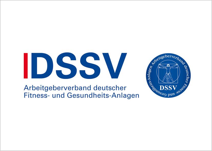 DSSV Logo Partner
