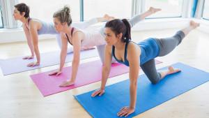 Präventionsprogramme - Finest Fitness Club Weinheim
