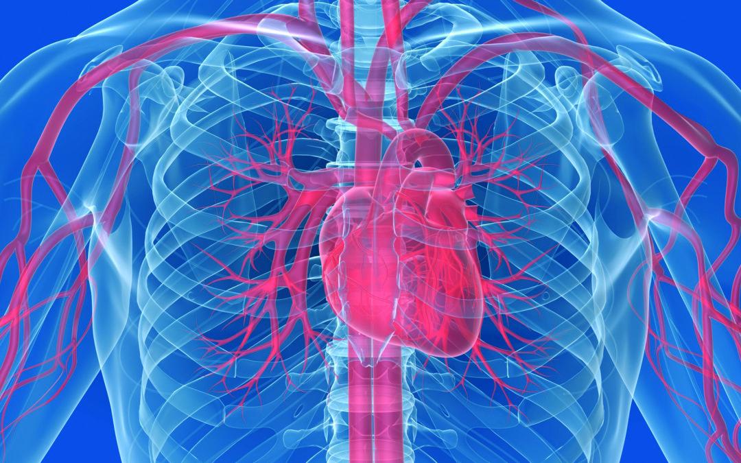 Reha-Herzsportgruppe